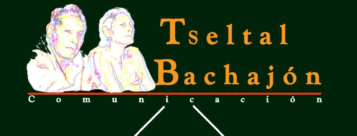 Tseltal Bachajón Comunicación